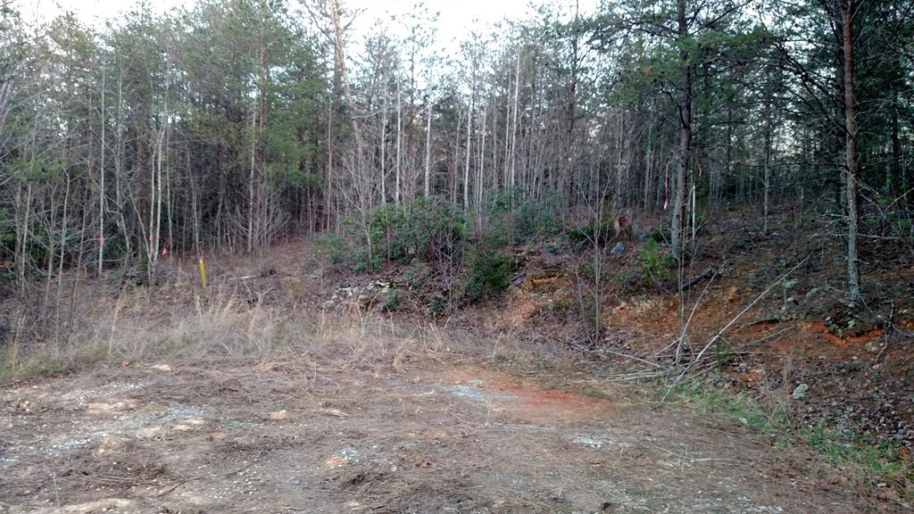Level Lot Located Outside City Limits