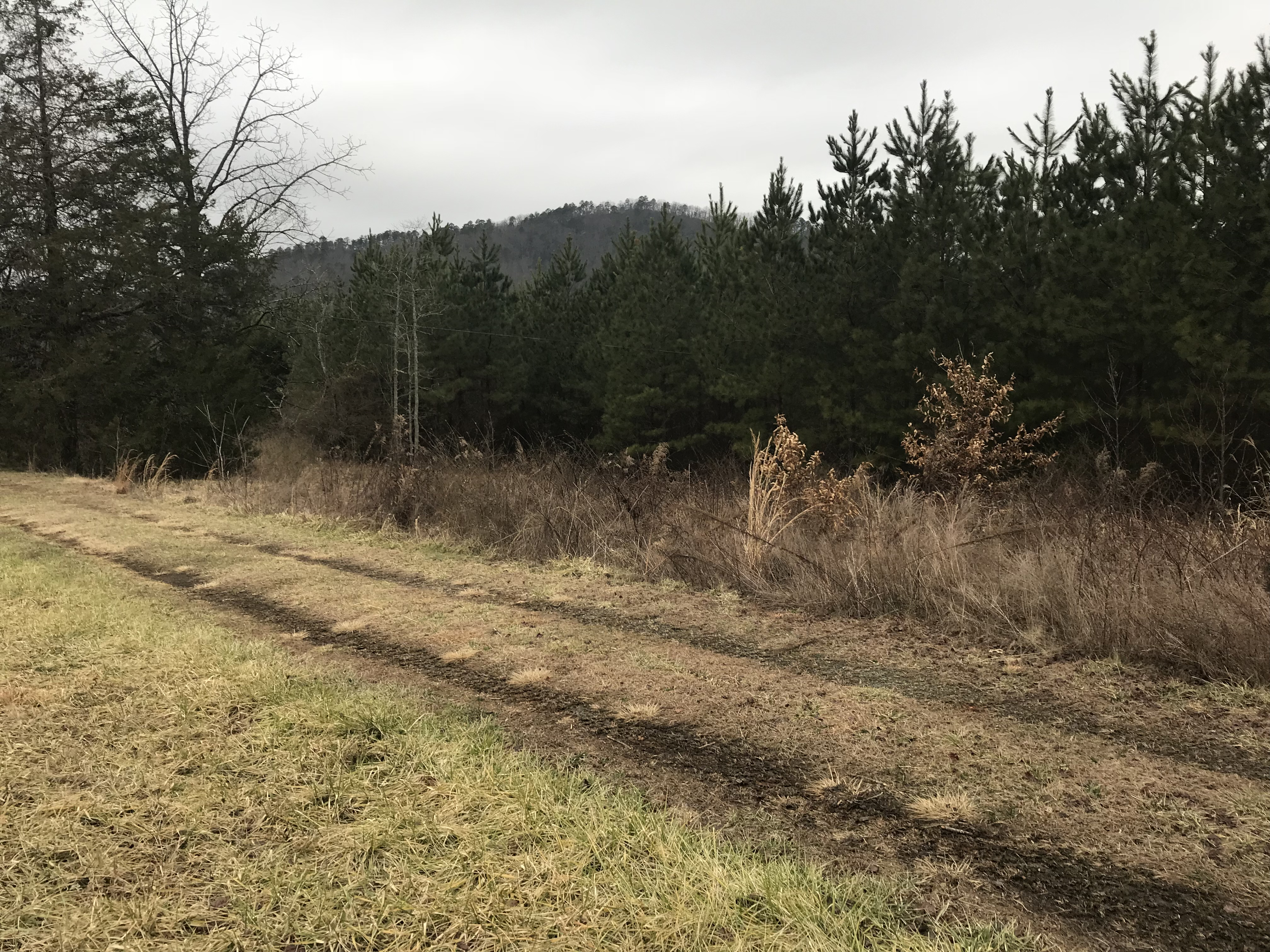 SOLD!! 36 Acres Unrestricted Property